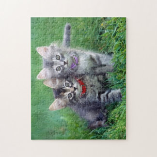 Puzzle gris mignon de deux chatons