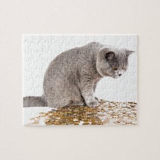 Puzzle Humour de chat et de chien