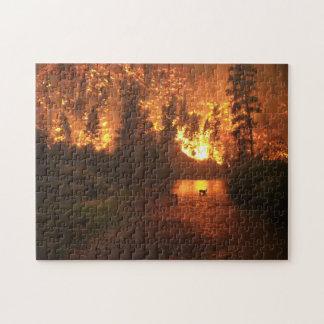 Puzzle Incendie de forêt - cerf commun
