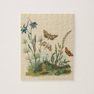 Puzzle Insectes vintages de jardin, papillons, chenilles