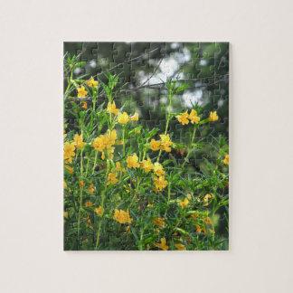 Puzzle jaune de fleurs sauvages