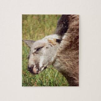 Puzzle Kangourou de bébé