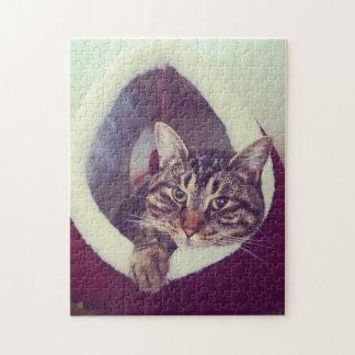 Puzzle Kitty tigré en photographie de plan rapproché de