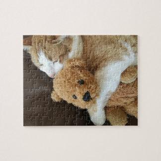 Puzzle Le chat tient le vieil ours de nounours