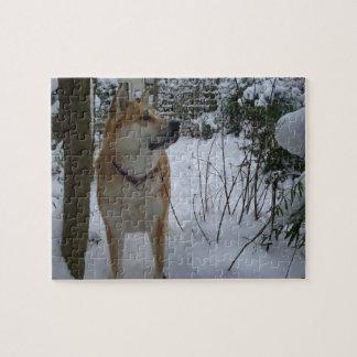 Puzzle le chien d'akita dans la neige a couvert la photo