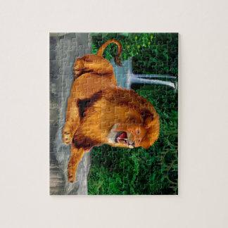 Puzzle Le roi d'hurlement de lion