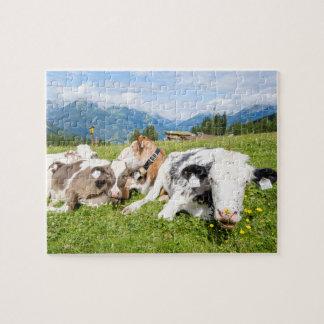 Puzzle Le Tyrol, Autriche