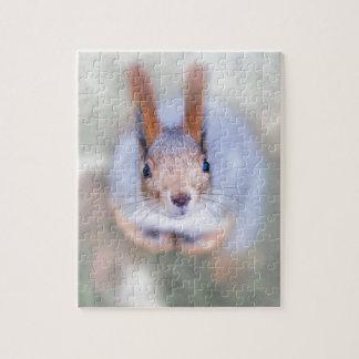 Puzzle L'écureuil vous regarde de bas en haut