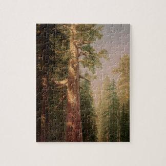 Puzzle Les grands arbres, verger de Mariposa, CA par