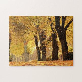 Puzzle Ligne d'arbre en automne