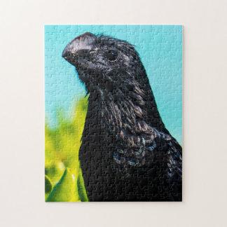 Puzzle Oiseau exotique mignon