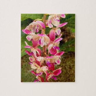 Puzzle Orchidée - plaisir tropical