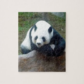 Puzzle Ours panda chinois