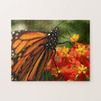 Puzzle Papillon de monarque orange et noir