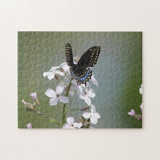 Puzzle Papillon noir de machaon
