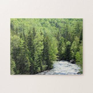 Puzzle Paysage vert pittoresque de forêt du Maine