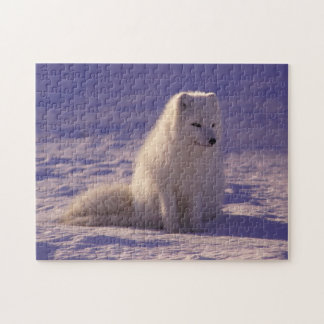 Puzzle pelucheux de Fox de neige