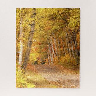 Puzzle Photographie de nature de feuillage d'automne au
