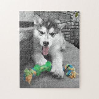 Puzzle Photographie d'éclaboussure de couleur de chiot de