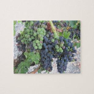 Puzzle : Raisins sur la vigne, vignoble de colline