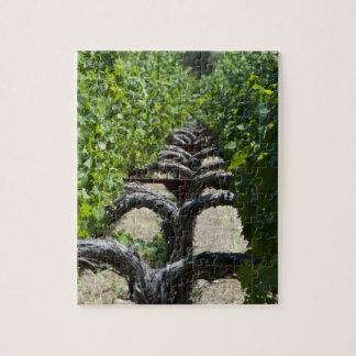 Puzzle Rangée de vignoble de Napa Valley