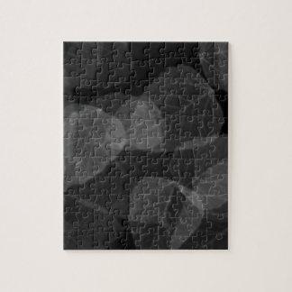 Puzzle Rayon X de feuille