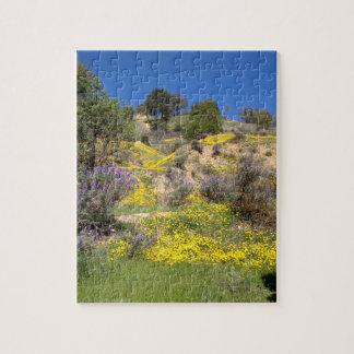 Puzzle Ressort dans les collines