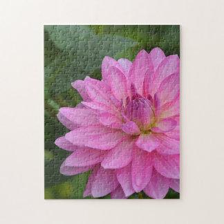 Puzzle rose de dahlia