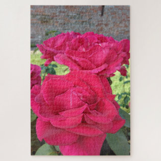 Puzzle Roses rouges
