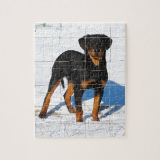 Puzzle Rottweiler de Lobo