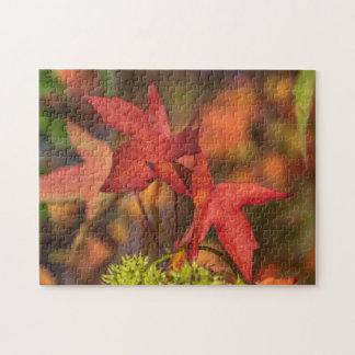 Puzzle rouge de photo de feuille d'automne