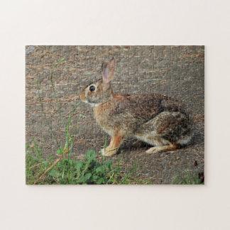 Puzzle sauvage de lapin