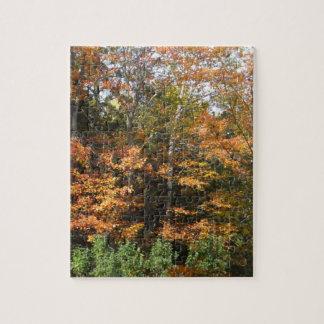 Puzzle Semaine d'Arbre-Puzzle d'automne