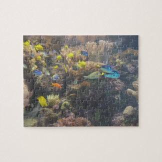 Puzzle sous-marin de la beauté 3