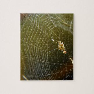 Puzzle Toile d'araignée