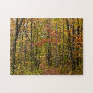 Puzzle Traînée de colline de laurier dans l'automne