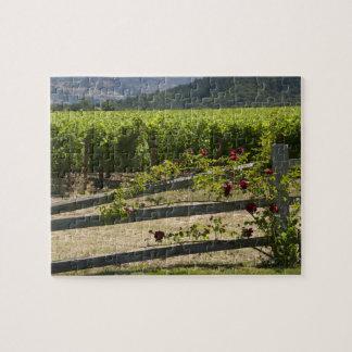 Puzzle Vignoble et roses de Napa Valley