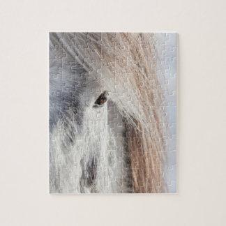 Puzzle Visage islandais blanc de cheval, Islande
