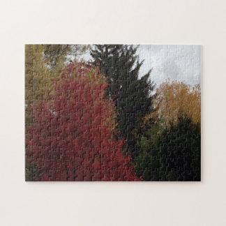 Puzzles gris de ciel d'arbres colorés d'automne