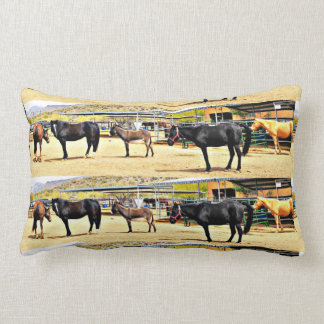 Quatre chevaux et coussin lombaire d'âne un poly