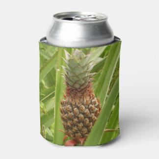Rafraichisseur De Cannettes Fruit tropical d'ananas sauvage en nature