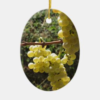 Raisins blancs sur la vigne. La Toscane, Italie Ornement Ovale En Céramique