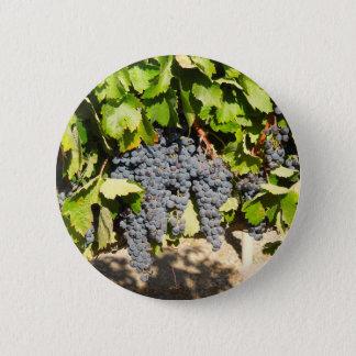 Raisins de Napa Badge Rond 5 Cm