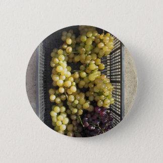 Raisins mûrs dans la boîte badge rond 5 cm