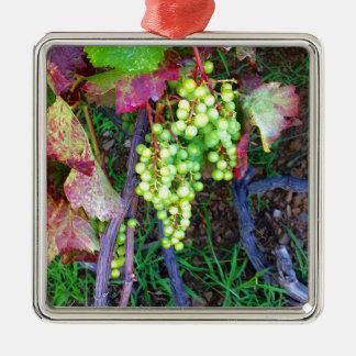 Raisins naturels ornement carré argenté