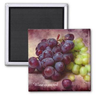 Raisins rouges et verts aimant