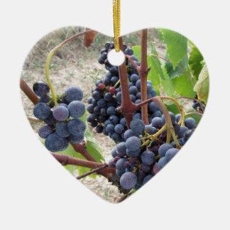 Raisins rouges sur la vigne avec le feuille vert ornement cœur en céramique