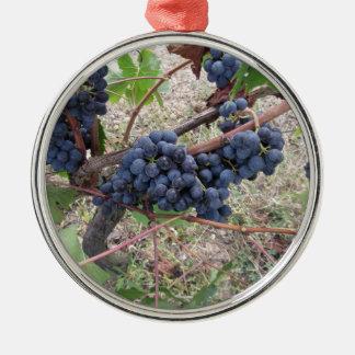 Raisins rouges sur la vigne avec le feuille vert ornement rond argenté