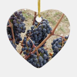 Raisins rouges sur la vigne. La Toscane, Italie Ornement Cœur En Céramique