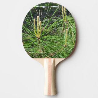 Raquette De Ping Pong Aiguilles de pin par Kenneth Yoncich